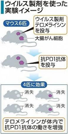 ウイルス製剤を使った実権イメージ