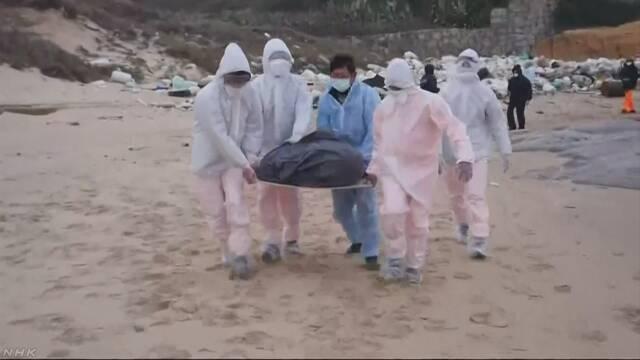 台湾の離島に「アフリカ豚コレラ」感染のブタ 中国から漂着か | NHKニュース