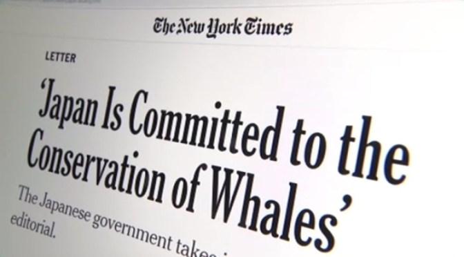 日本政府、IWC脱退めぐり米紙に反論投稿 TBS NEWS