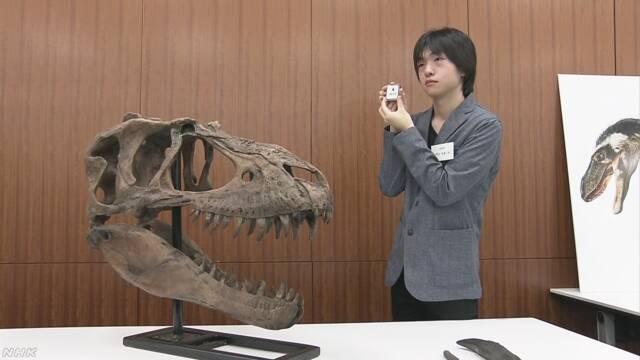 「ティラノサウルス」の仲間の化石 発掘体験中の高校生が発見 | NHKニュース