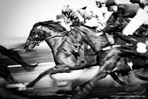 Horse Racing  54ka [photo blog]