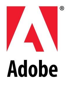 Software Update: Adobe Flash and Air Update