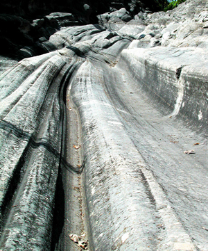 Glacial grooves, Kellys Island, OH by Ted Lee Eubanks