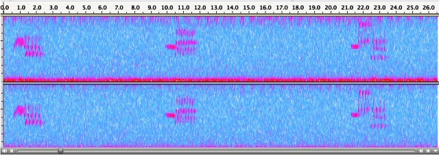 BASP recording 2