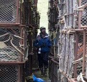 Working the crab pots. Photo by Greg Neise.