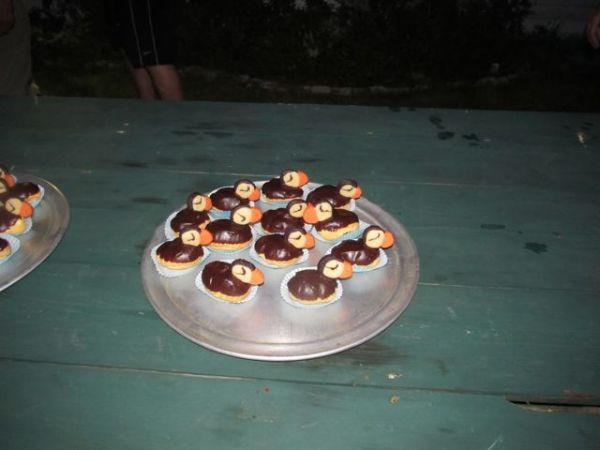 creampuffins