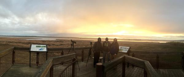 It's worth the effort. Here's our team celebrating in the glow of a great April run: 165 species.