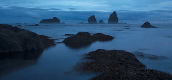 A moody scene on Washington's ethereal Olympic Peninsula (Photo © Jess Findlay)