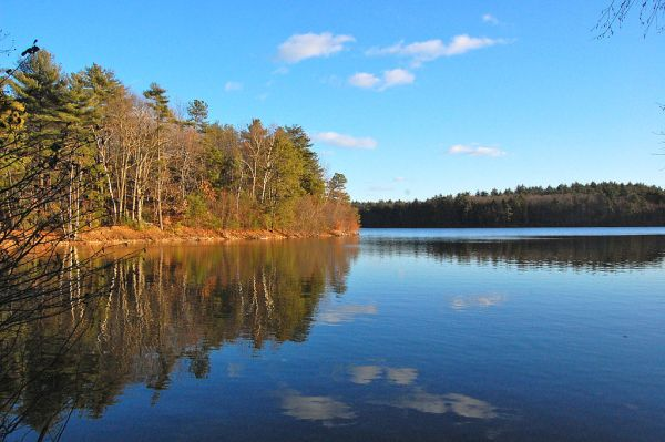 Thoreau's beloved Walden Pond, as it exists today.