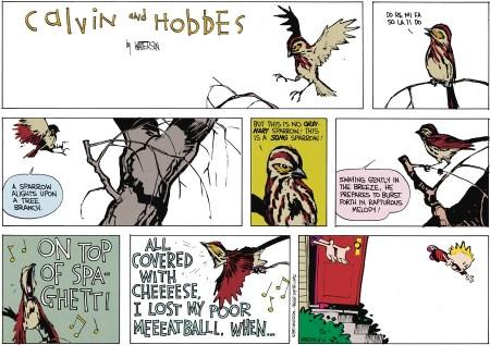 05 Calvin & Hobbes