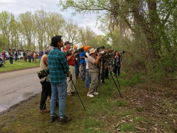 Birders at Magee Marsh, OH. Photo by Debora Sneden Novak.