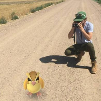 The line between birding and Pokemon GO can get a little hazy. Photo: Jennie Duberstein