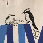 American Birding Podcast: Birding, Social Media, and the Facebook Summit