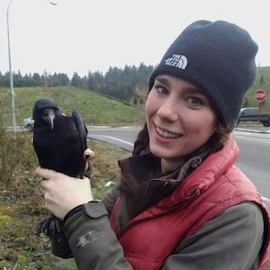 American Birding Podcast: On Crow Culture with Kaeli Swift