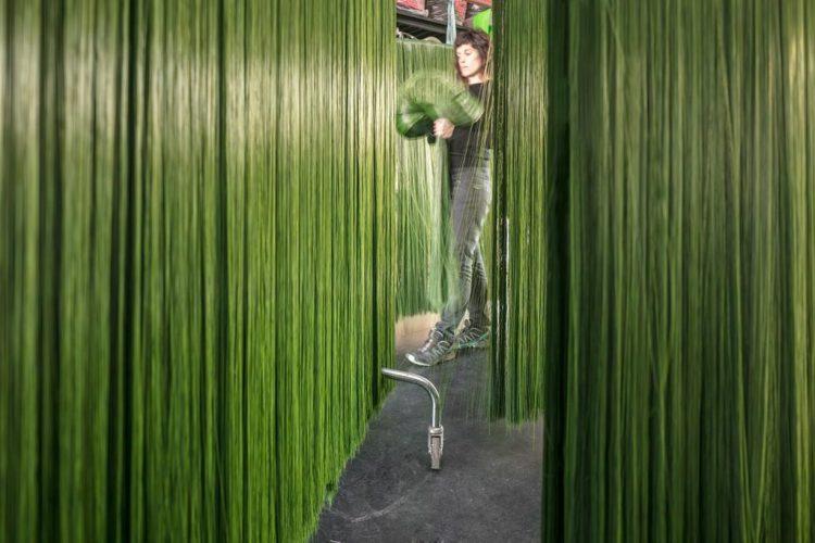 """Opera """"Labirinto"""" dell'artista Francesca Pasquali"""