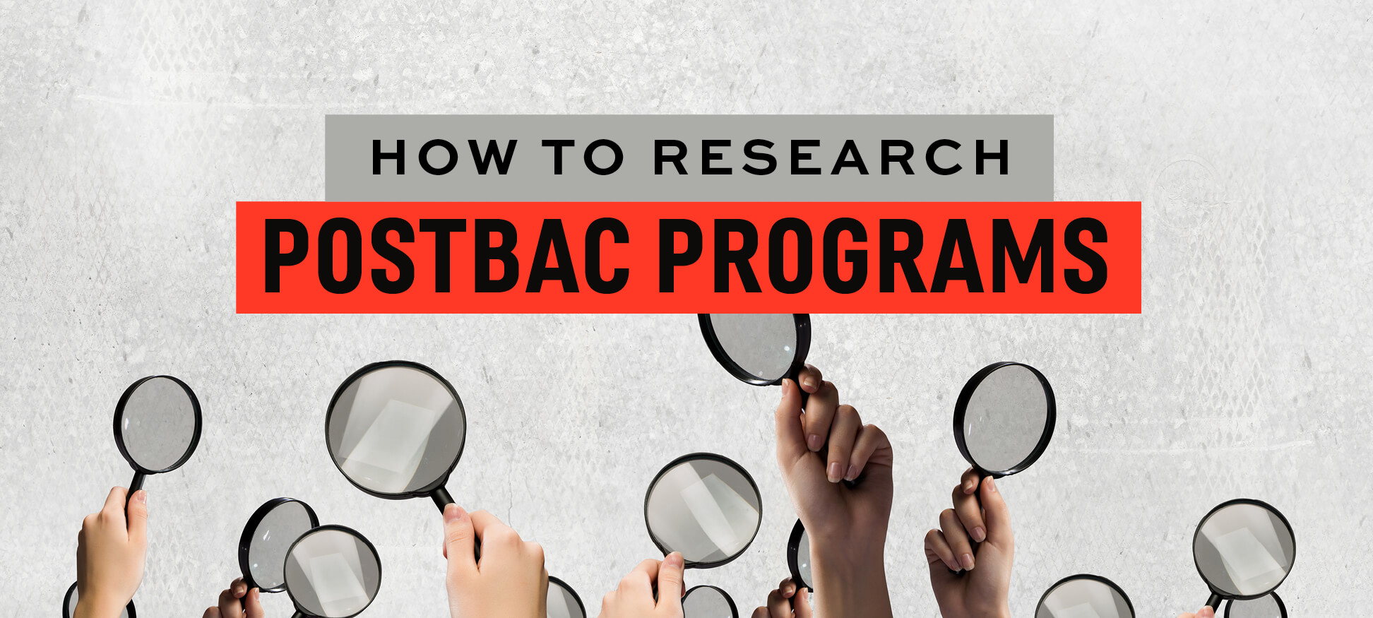 Download your free guide to applying successfully to postbac programs!