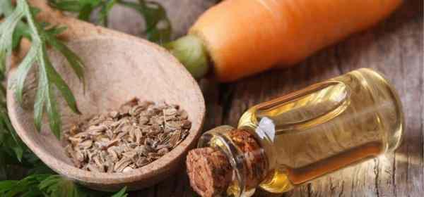 auto bronzant naturel huile de carotte