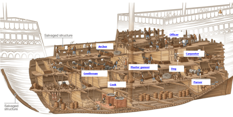 Mary Rose cutaway