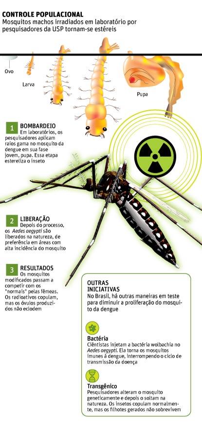 irradiação insetos