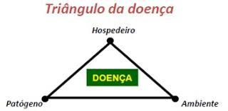 triangulo da doença