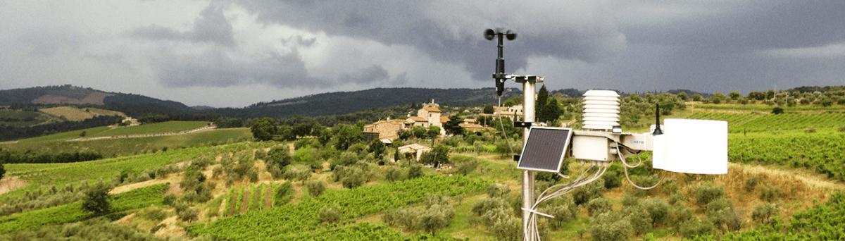 sensores-na-agricultura