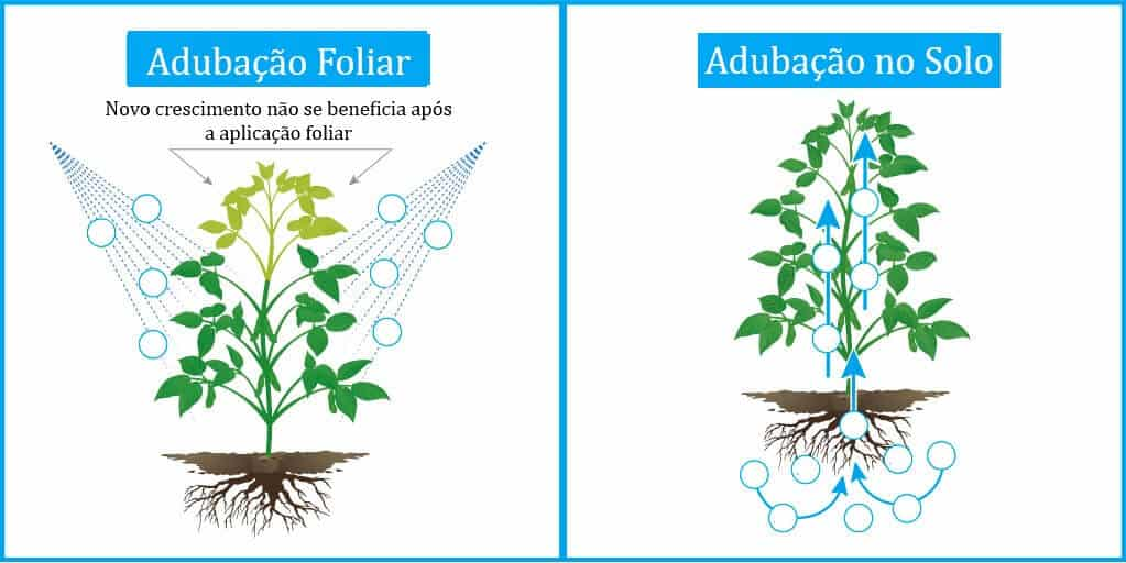 adubação-foliar-soja