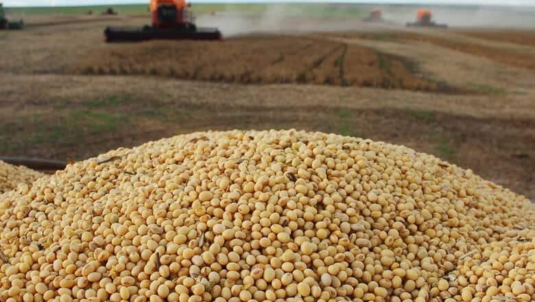 mercado futuro de soja 2019