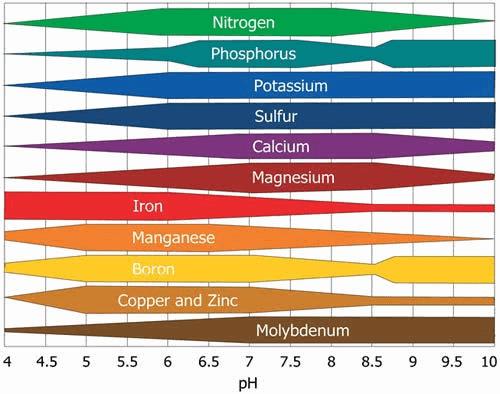 pHs do solo