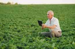 gestão de fazendas