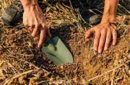 diagnóstico rápido da estrutura do solo