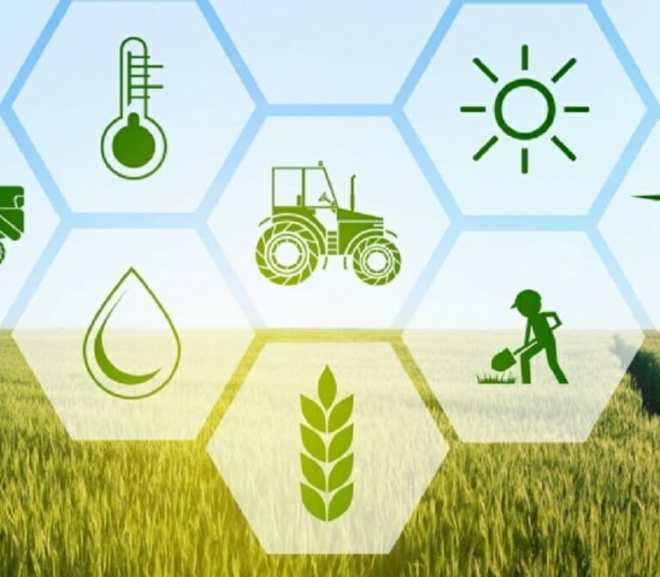 The Role of Technology in Agribusiness and the Opportunities