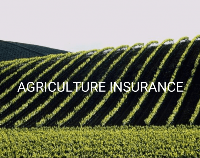 Benefits of Agricultural Insurance: The AgroDomain Proposal