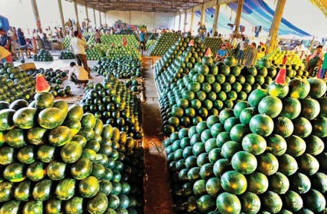 Agrodomain Makes Case for Linking Smallholder Farmers to Markets – Agro-Marketplace.