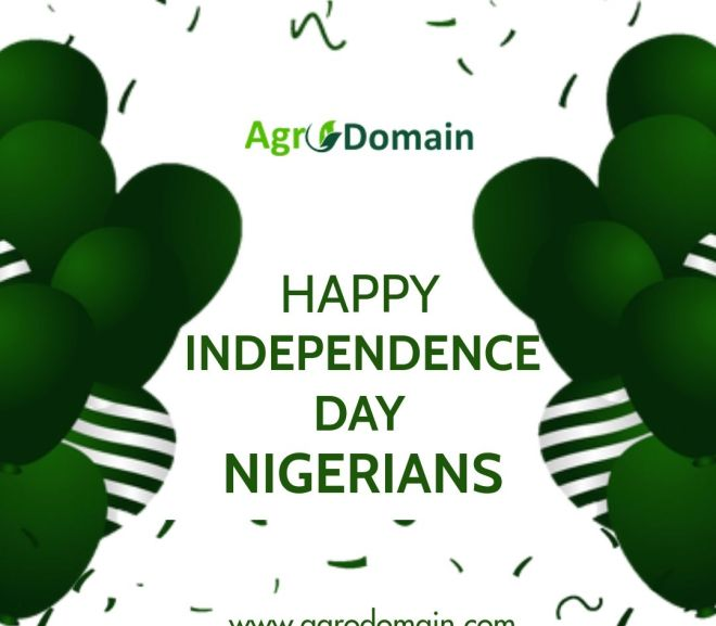 Nigeria @60- Happy Independence Day