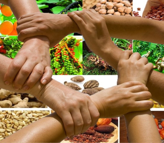 Agricultural Cooperatives in Sub-Saharan Africa: Key to Collective Success