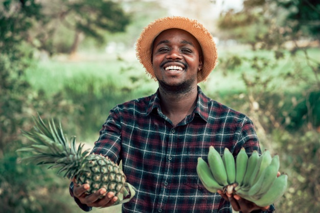 Agriculture: The Future of Youth Employment in Africa