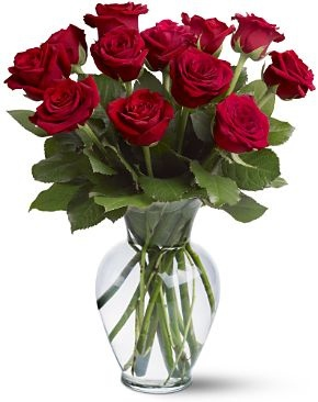 Mit jelentenek a vir gok tmutat a vir gnyelvhez a for 12 dozen roses at your door