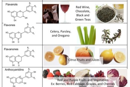 Flavonoids in Your Foods, Here's Where to Get Them