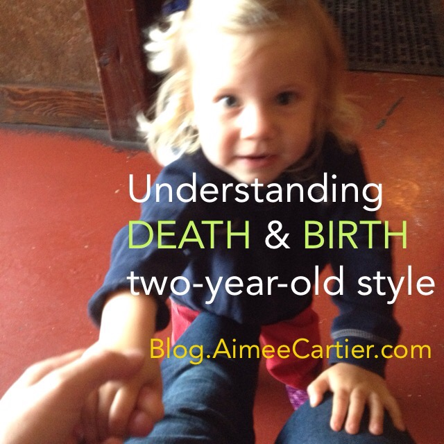 Understanding Death and Birth two-year-old style Aimee Cartier Blog