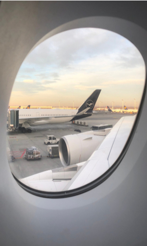 lufthansa livery tail through airplane window