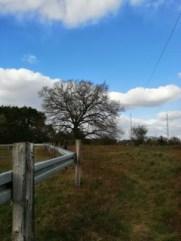 Foto von einem Zaun