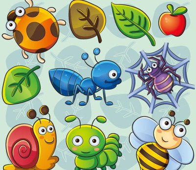 Insects in English