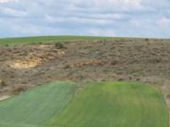 189 Brochazos de verde para pintar el campo Alcuetas