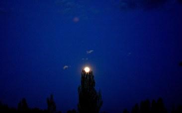 072 - La luna del Caño en su Nido