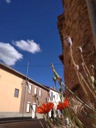 Nubes y Vegetación