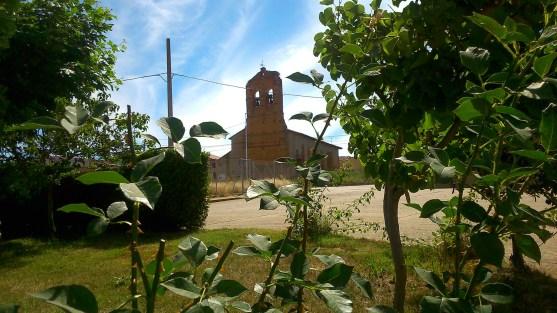 Iglesia entre Vegetación