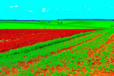 Primavera Surrealista en Alcuetas