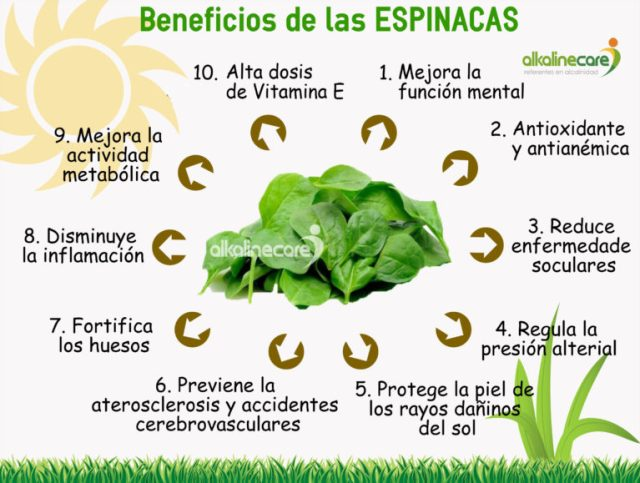 Beneficios-Espinacas