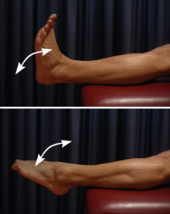 Exercises for a Talus Fracture