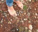 It's risky to walk on stones